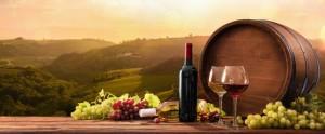 αποθηκευση κρασιων